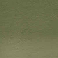Watercolour Olive Green 51